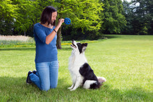 Playing Fetch With Her Dog