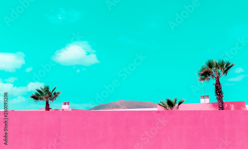 Wall Murals Green coral Colorful minimal concept. Tropical location. Plants on pink design. Canary Islands