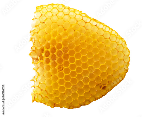 Photo Empty bees honeycombs without honey closeup isolated