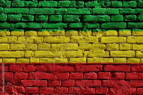 Brick wall painted in green, yellow and red. Rastaman flag. Canvas Print