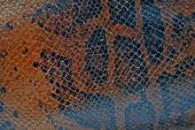 Snake Skin Brown Fragment Vint...
