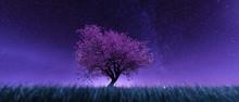 Garden Of Heaven,Background Of Sakura Tree Flower At Night Sky,3d Rendering