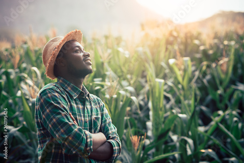 Fotomural  African Farmer with hat stand in the corn plantation field