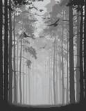 aleja sosnowego lasu z latającymi ptakami - 260215476