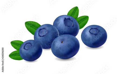 Blueberry isolated on white background. Realistic illustration Fototapete