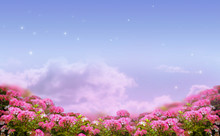 Fantasy Background Of Morning Sky With Shining Stars, Mysterious Clouds And Rose Flowers Field