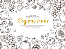 Fruit Background. Farmer Eco Fruits And Berries Vintage Sketch Healthy Food Vector Poster. Illustration Of Healthy Fruit Berry And Melon, Lemon And Grapes