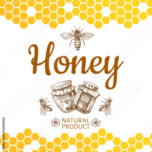 Fotografía  Vintage honey logo and background with vector bee, honey jars and honeycombs
