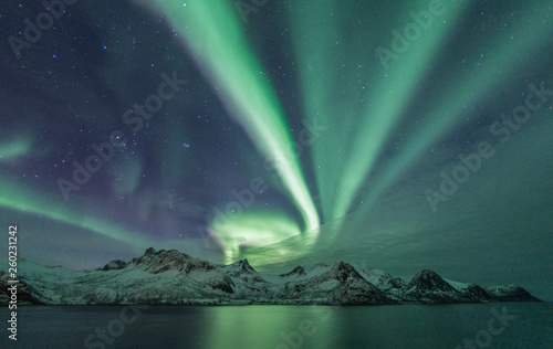 Foto op Plexiglas Noorderlicht Aurora Borealis across a mountain range on Senja from Husøy, northern Norway