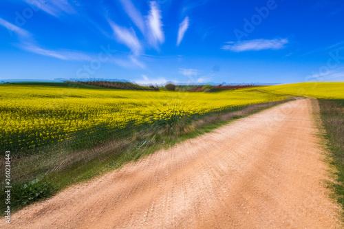 Tuinposter Zwavel geel pictorial photography