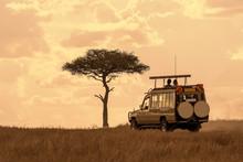 Tourist On Safari Adventure At...