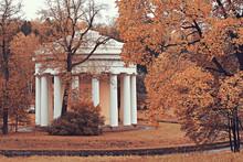 Autumn Landscape Of The Peterhof / Autumn Park In The Petersburg, Autumn Season In The Yellow Park