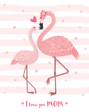 Cute Pink Flamingo Mom With Its Baby.