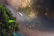 Waldklee Blüte in Mystischen Licht
