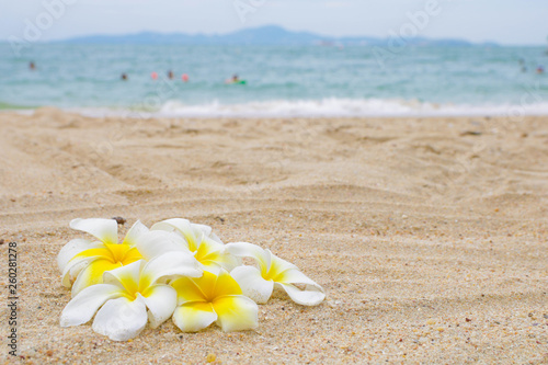 Wall Murals Plumeria A bunch of frangipani flowers on the sand beach with blue sea on background