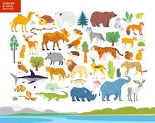 Vector Flat Illustration Of Europe & Asia Landscape, Animals, Plants: Polar Bear, Moose, Squirrel, Wolf, Elephant, Tiger, Rhino, Crocodile, Jaguar. For Infographics, Children Book, Alphabet, Banners.