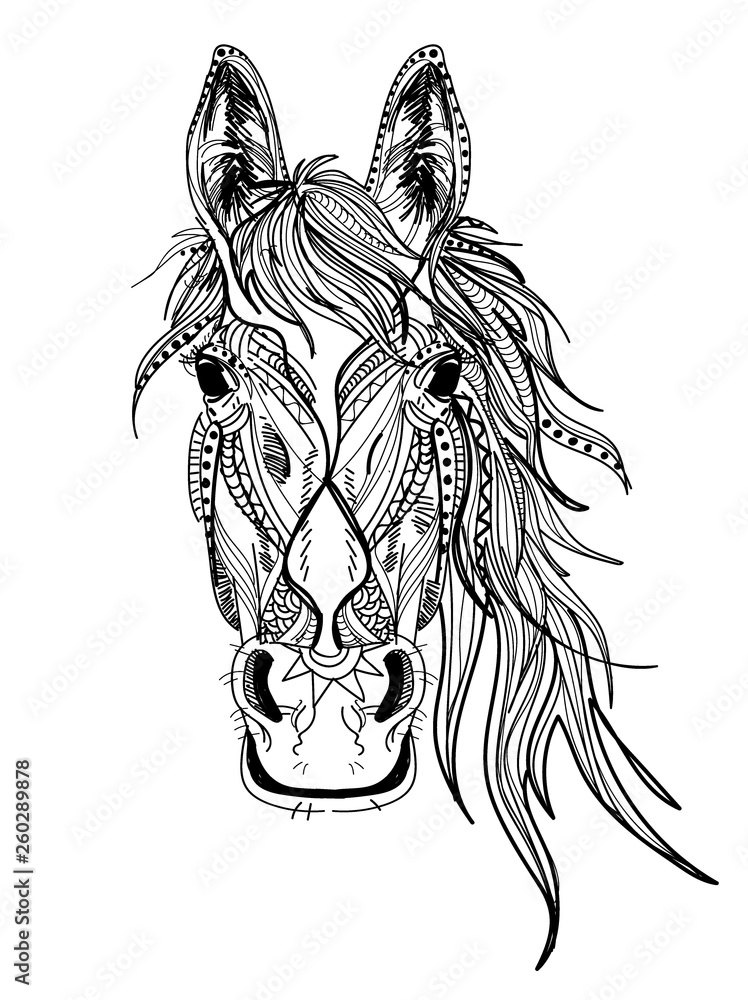 Fototapeta Horse's head. Drawing by hand in vintage style. Meditative coloring. coloring for children. A horse with a long mane. Arrows, points, patterns.