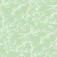 Willow Catkins Branches Hand Drawn Seamless Pattern