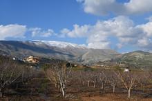 Mount Hermon, Golan Heights, I...