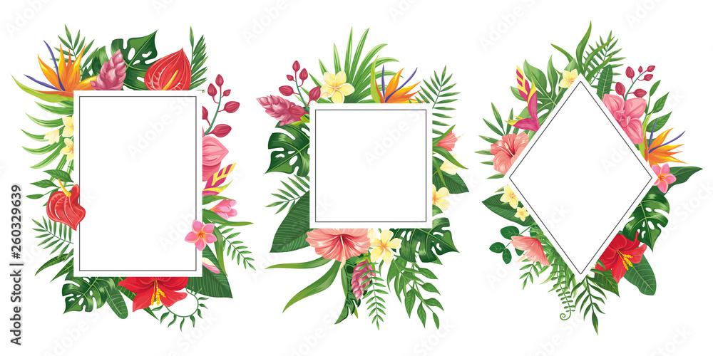 Fototapeta Tropical flower frames. Botanical tropics borders, tropic flowers invitation frame and summer plants green leaves vector background