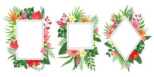 Tropical Flower Frames. Botani...