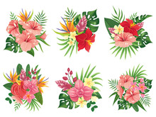 Tropical Flowers Bouquet. Exot...