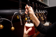Bartender Pours Fresh Ale From Tap In Tap