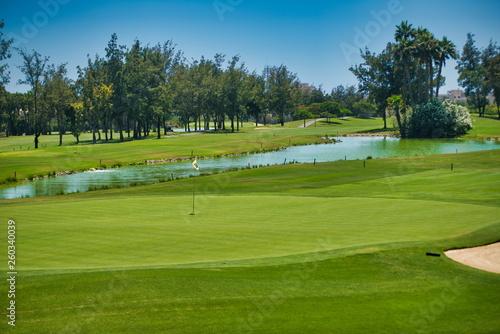 Slika na platnu golf course landscape