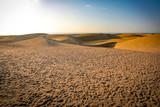 Fototapeta Natura - Summer background of sand and beach
