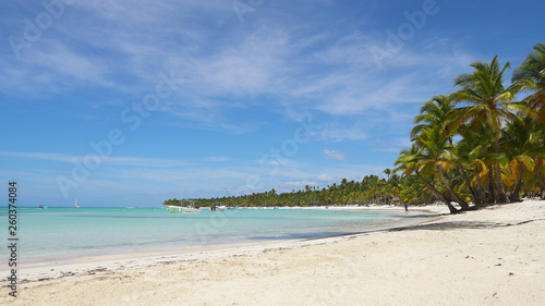 Tropical Beach With Coconut Palm Trees Maldives Travel