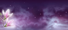 Fantasy Background Of Magical Night Sky With Shining Stars, Mysterious Clouds And Pink Magnolia Flowers