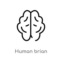 Outline Human Brian Vector Icon. Isolated Black Simple Line Element Illustration From Nature Concept. Editable Vector Stroke Human Brian Icon On White Background