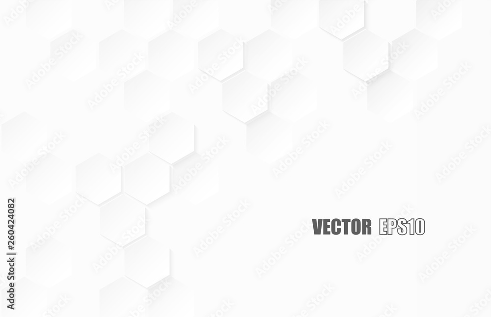 Fototapeta Abstract. Hexagon paper geometric. white Background ,light and shadow .Vector.