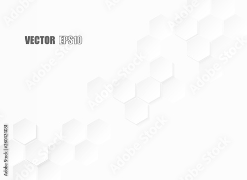 Obrazy białe  abstract-hexagon-paper-geometric-white-background-light-and-shadow-vector
