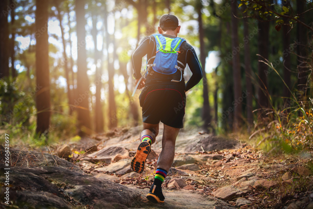 Fototapety, obrazy: A man Runner of Trail . and athlete's feet wearing sports shoes for trail running in the forest