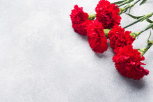 Red Carnations On Concrete Background With Copy Space. Mother's Day Card, Valentine's Day.