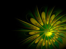 Abstract Fractal Yellow Green Flower On Black Background