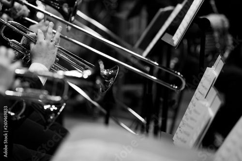 The hands of the trumpeter in the orchestra in black and white - 260469833