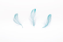 Blue Lightweight Three Feather...