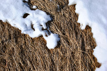 Dry Grass Covered With White M...