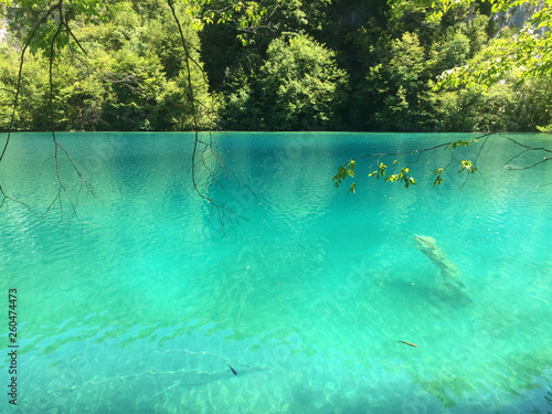 Wall Murals Green coral Landscape of Plitvice Lakes National Park or nacionalni park Plitvicka jezera, UNESCO natural world heritage - Plitvica, Croatia