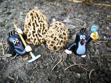 Miniatur Figures In The Garden