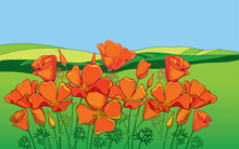 Outline Orange California Poppy Flower Or Eschscholzia, Leaf And Bud On The Background With Green Field And Blue Sky.
