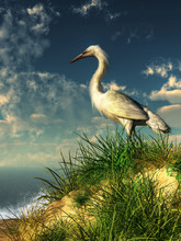 A Snowy White Egret Stands On A Sand Dune That Overlooks The Ocean. Below, Waves Crash Against The Shore. The Egret Looks Out Over The Water As A Sea Breeze Ruffles Its Feathers. 3D Illustration