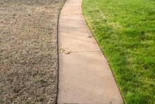 Sidewalk With Green Fescue On ...
