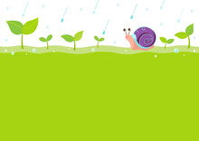 Snail And Sprout On Rainy Day Background