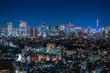 恵比寿ガーデンプレイスタワー 展望台 夜景