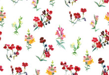 Snapdragon And Carnation Flowers On White Background