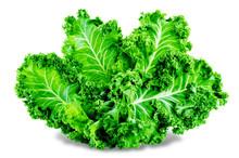 Fresh Kale Bunch On A White Ba...