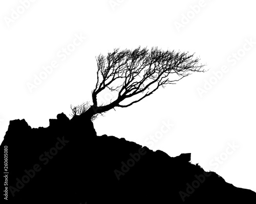 Slika na platnu Black and White Illustration image of a tree and hillside in Silhouette